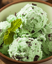 Keto Mint Chocolate Chip Ice Cream
