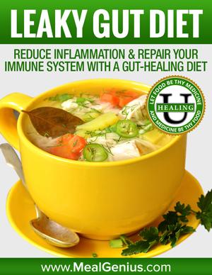 Leaky Gut Diet - Meal Genius