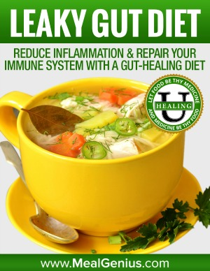 Leaky Gut Diet